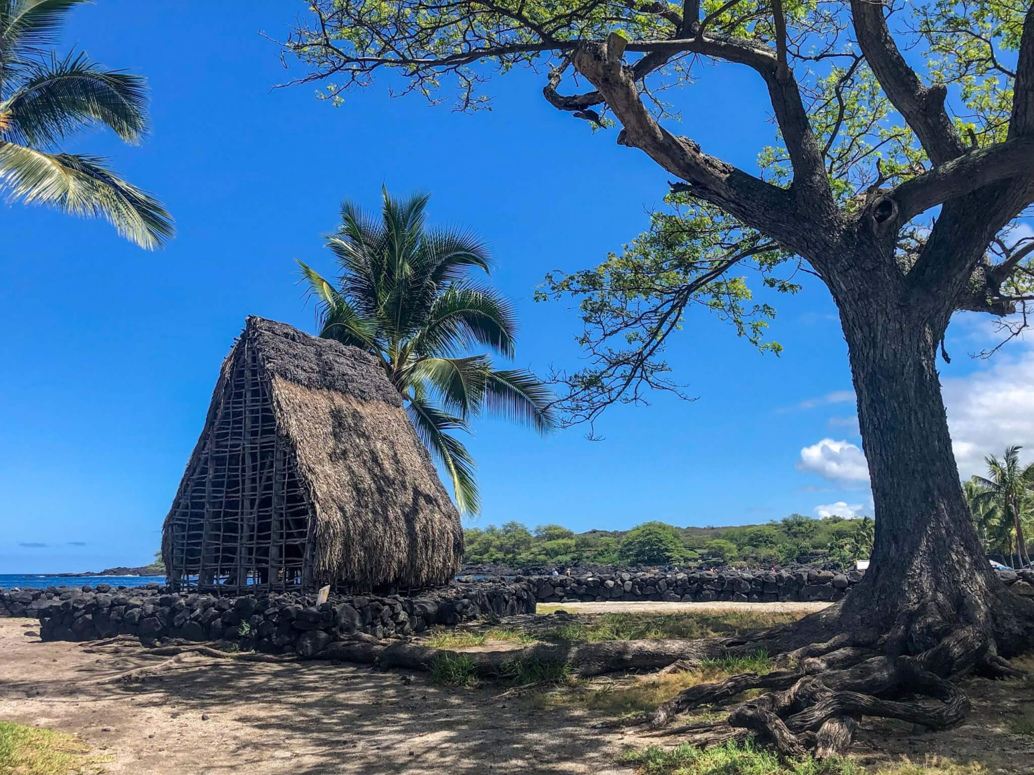 5 Luxurious Hotels On The Big Island Of Hawaii